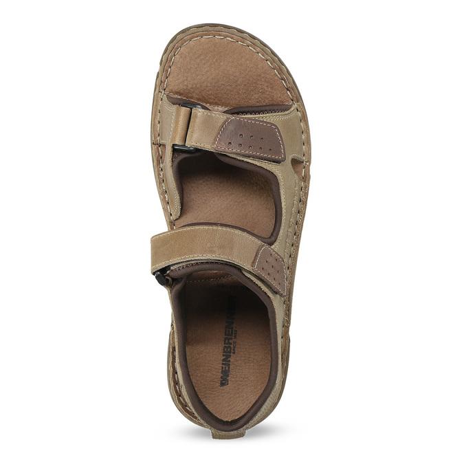 Kožené pánské sandály černo-modré weinbrenner, hnědá, 866-4643 - 17