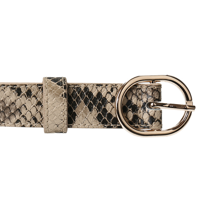 Béžový dámský opasek s hadím vzorem bata, vícebarevné, 951-0702 - 26